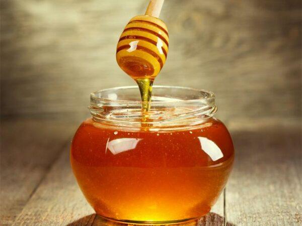 Raw Cactus Honey