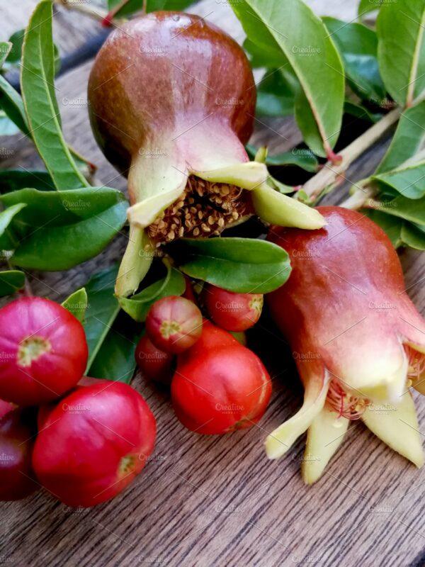 Raw Pomegranate Honey