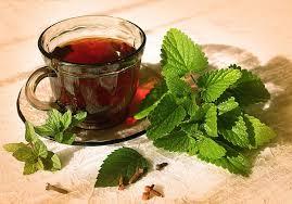 Chaga Tea with Mint