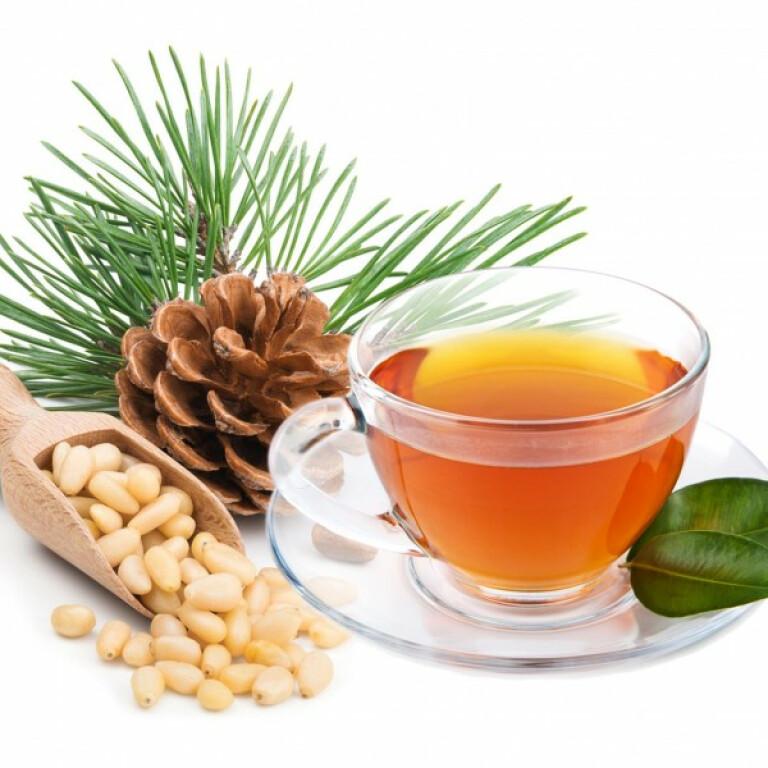 Chaga tea with pine nuts extract