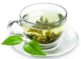 Green Tea - Classic Green - Hand Picked Tea