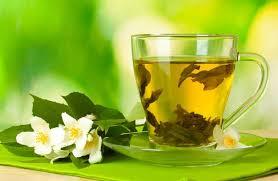 Green Tea Jasmine- Hand Picked Tea