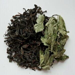 Ivan Tea leaf  with  black currant leaves