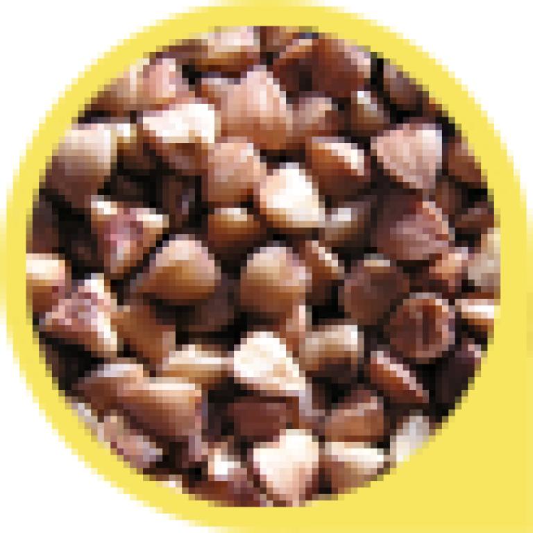 "Porridge 'Zdravitsa' No. 9 ""Favorite"" (for good digestion) GLUTEN-FREE! 7 portions, 200 g"