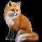 fox-and-honey1
